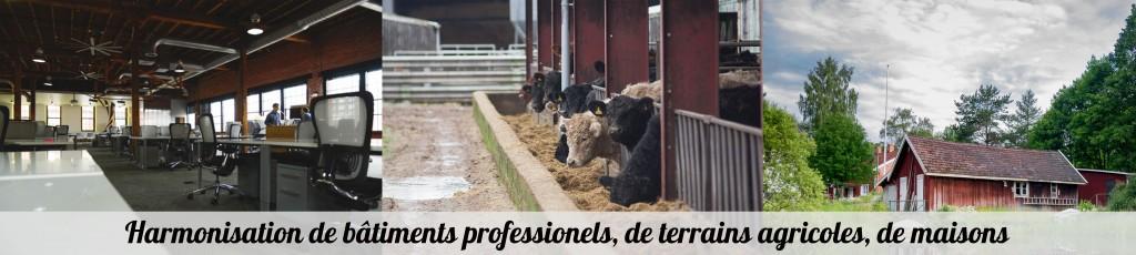 protocole expertise